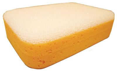 Image Scrubber Sponge